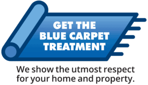 VAC Blue-carpet-BLK